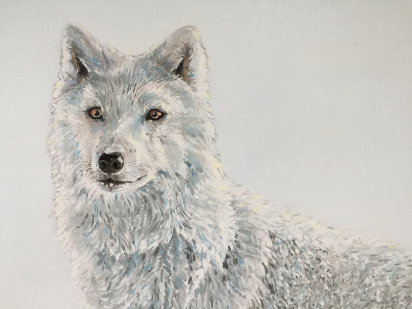 The white wolf (detail)